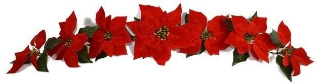 decorazione-addobbi-natalizi-7-fiori-stella-di-natale